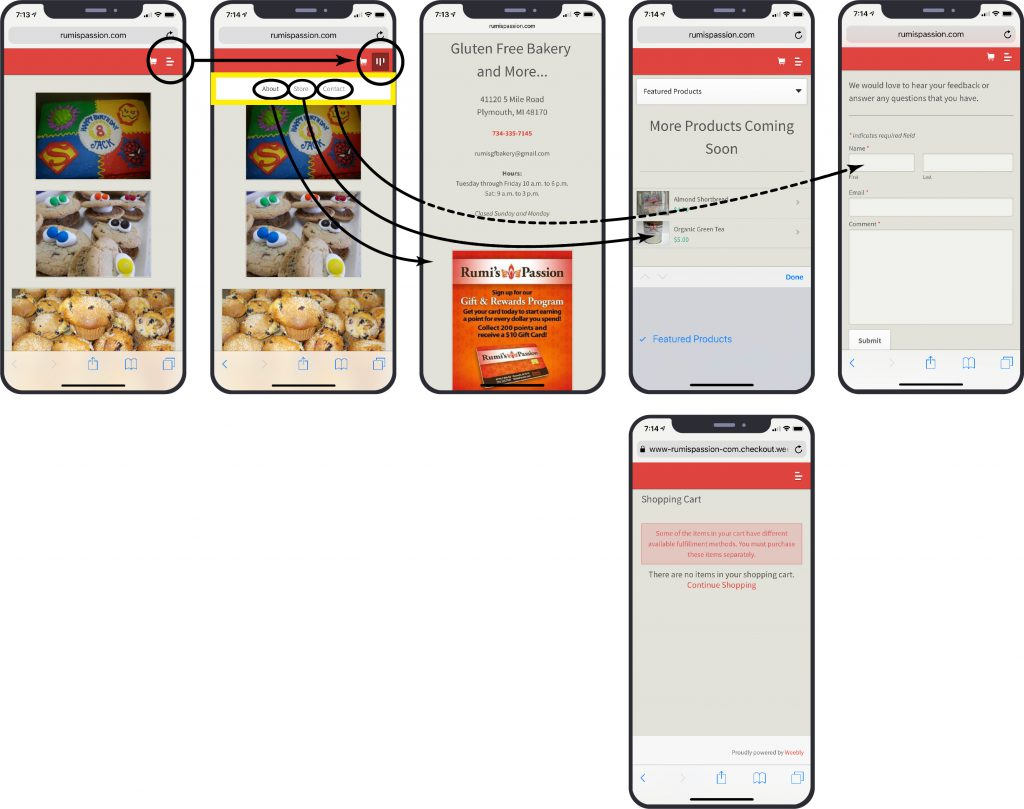 The original mobile version of the Rumi's Passion website shows six screens with skewed user flows.